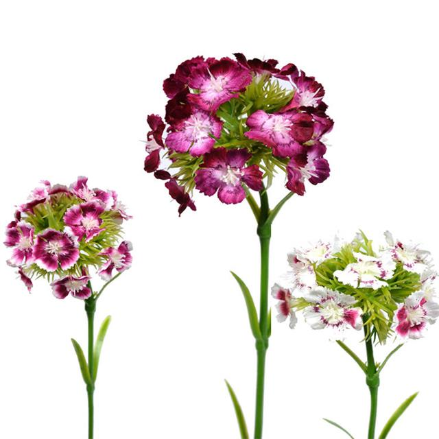 42cm Artificial Sweet William Flower Stem White