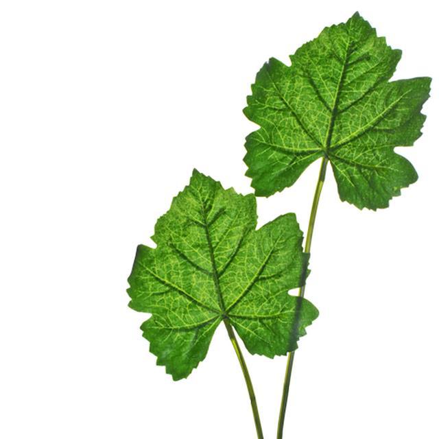 53cm Artificial Vine Twin Leaf Stem Shelf Edge