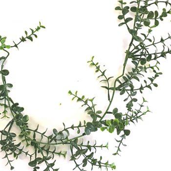 6ft Artificial Christmas Eucalyptus Garland