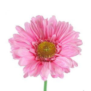 artificial-gerbera-baby-pink