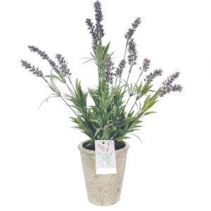 artificial-large-potted-lavender-plant