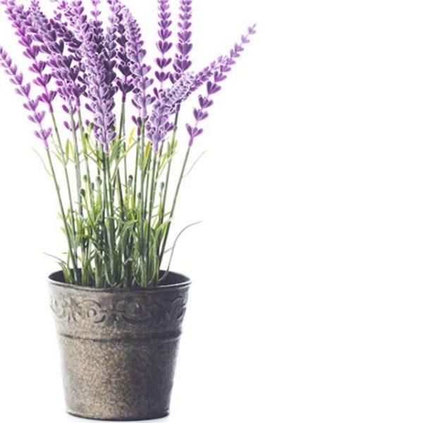 Artificial Lavender In Tin Pot Decorative Potted Plants