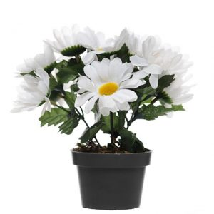 artificial-potted-daisy-plant-white-daisies