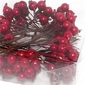 red-christmas-berries-in-pvc-box