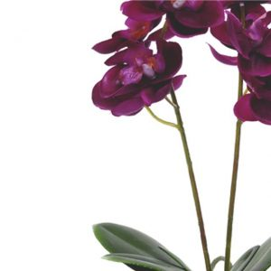 silk-artificial-fuchsia-orchid-plant