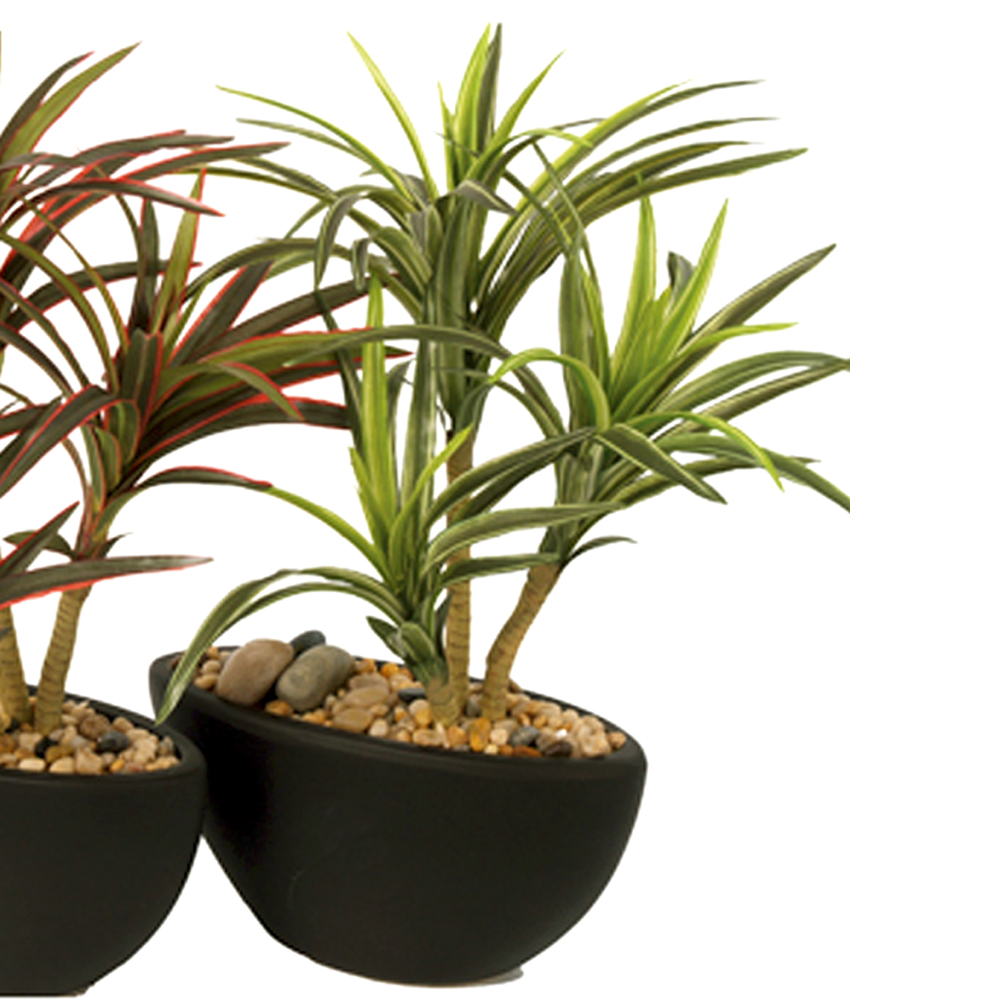 triple headed artificial potted yucca plant with striped green leaves shelf edge. Black Bedroom Furniture Sets. Home Design Ideas