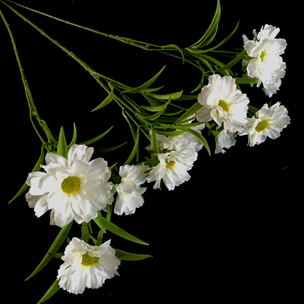 Three Stems Of Artificial Silk Daisy Spray White Shelf Edge
