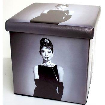udrey Hepburn Folding Storge Box