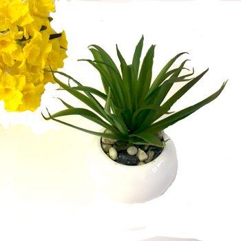 Artificial Succulent in White Ceramic Pot