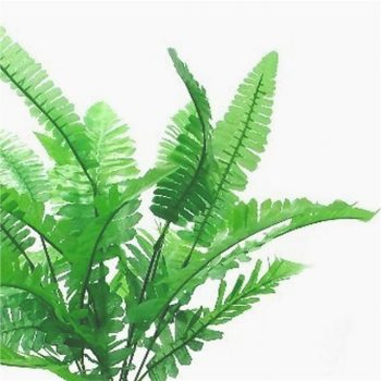 Artificial Budget Boston Fern