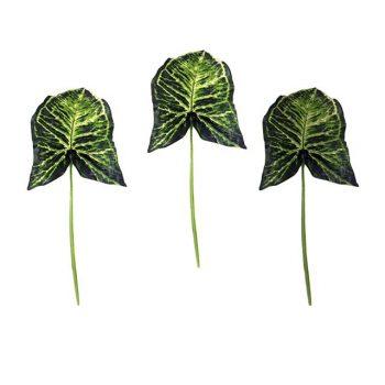 Artificial Nephthytis Leaf