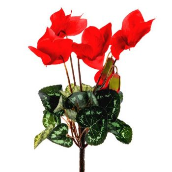 artificial cyclamen plant with red flowers