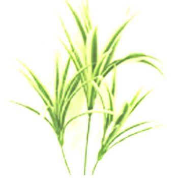 Artificial Variegated Leaf Plant