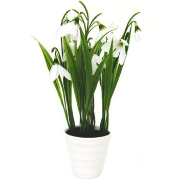 artificial potted snowdrops