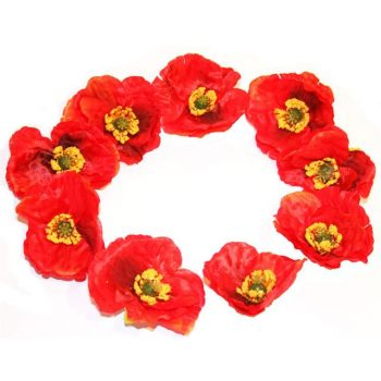 red poppy flower heads with yellow centres