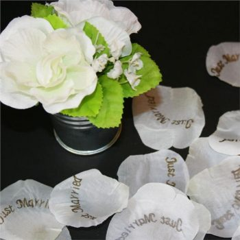Pack of 75 Silk Rose Petals Just Married
