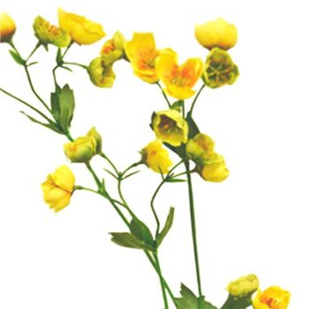 artificial buttercup spray
