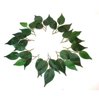 circle of artificial ficus leaves