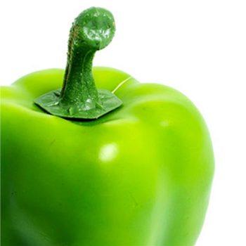 artificial green pepper