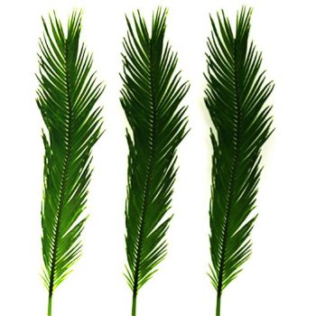 Artificial Cycas Palm Leaves