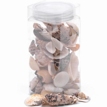 bottle of mixed seashells