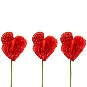 Artificial Red Anthurium