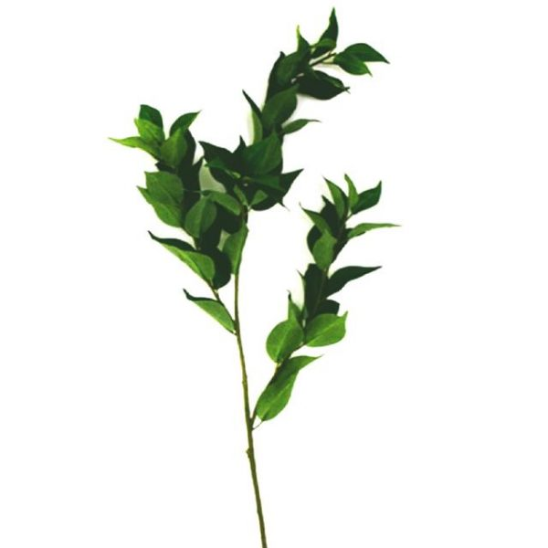 green artificial bay leaves