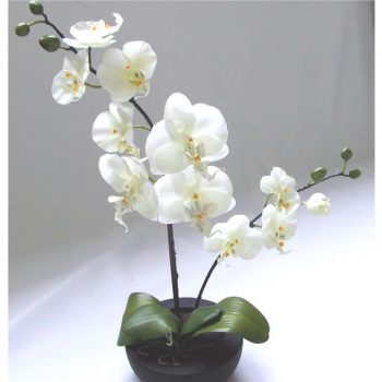 artificial orchid in bowl
