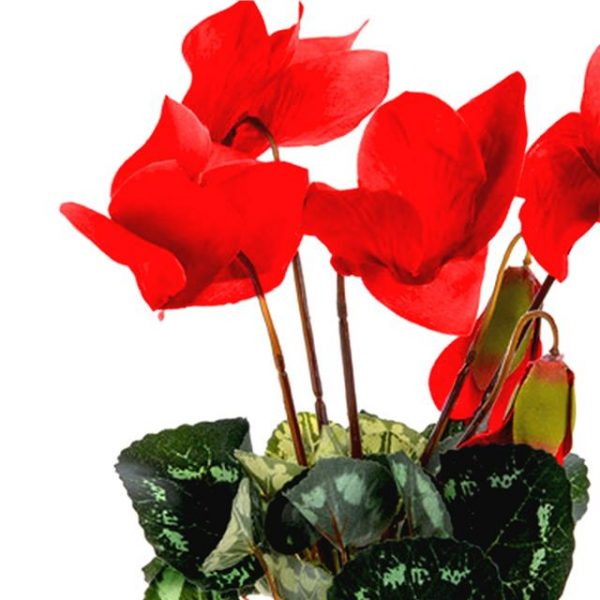 26cm red artificial cyclamen plant
