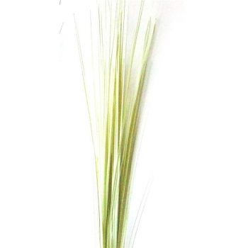 Artificial Cream Onion Grass
