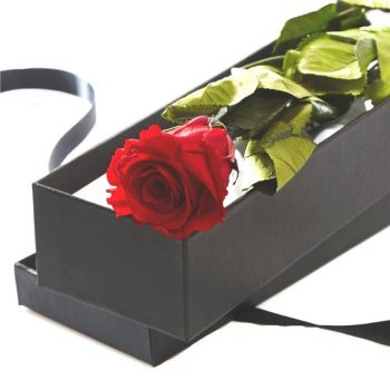single artificial rose in a black satin lined box
