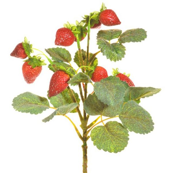 artificial strawberry pick with green leaf foliage
