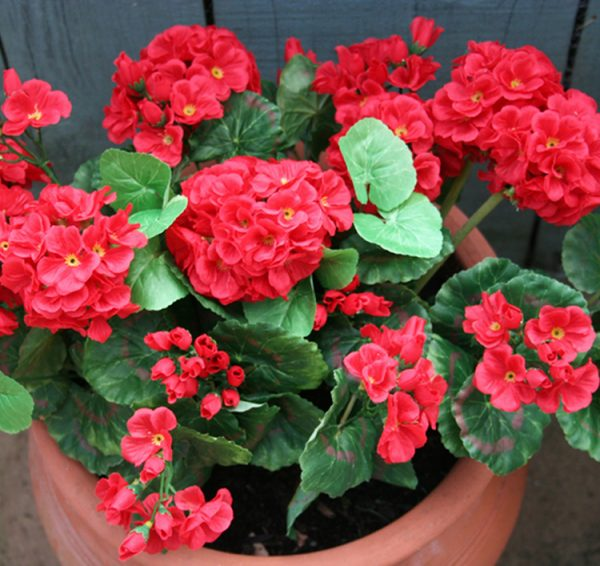Artificial Red Geranium Plant