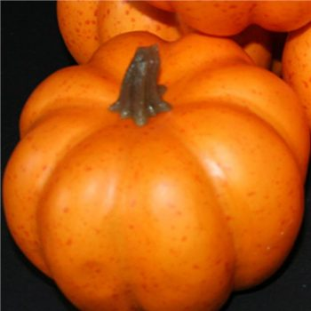 small artificial pumpkin with realistic touch