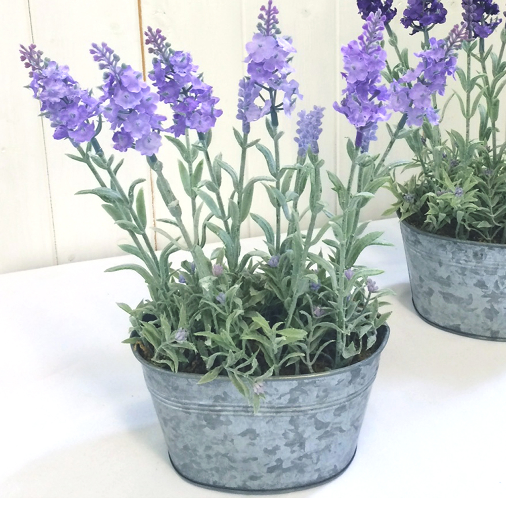 lilac artificial lavender plant in silver tin pot. Black Bedroom Furniture Sets. Home Design Ideas