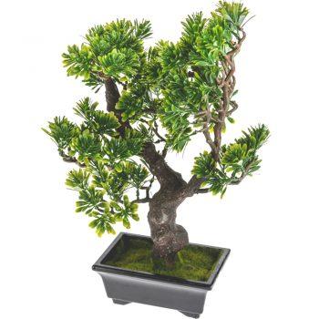 Artificial Mini Bonsai Podocarpus Tree