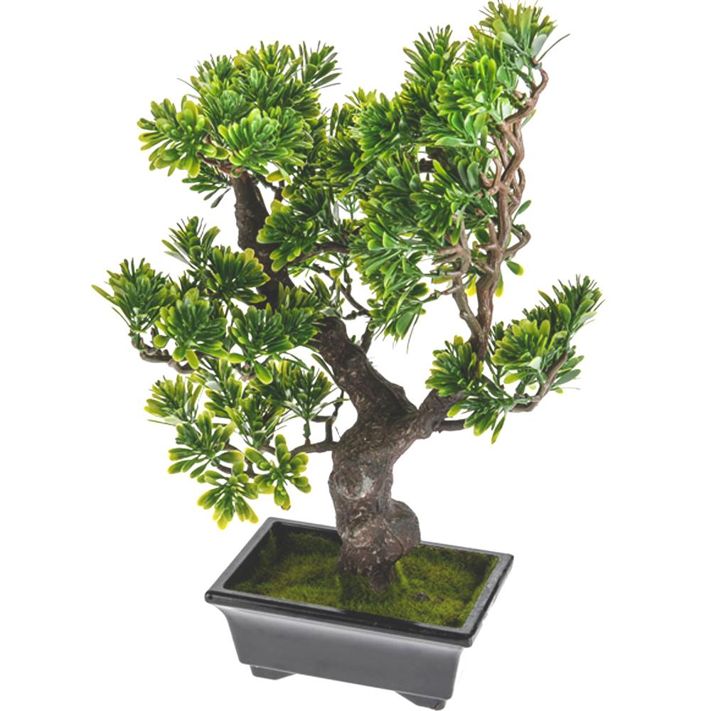 artificial mini bonsai podocarpus tree shelf edge. Black Bedroom Furniture Sets. Home Design Ideas