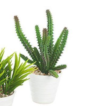 Tall Dark Green Spiky Leaf Artificial Succulent Plant