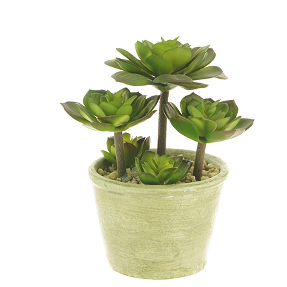 artificial succulent plant in round pot shelf edge. Black Bedroom Furniture Sets. Home Design Ideas