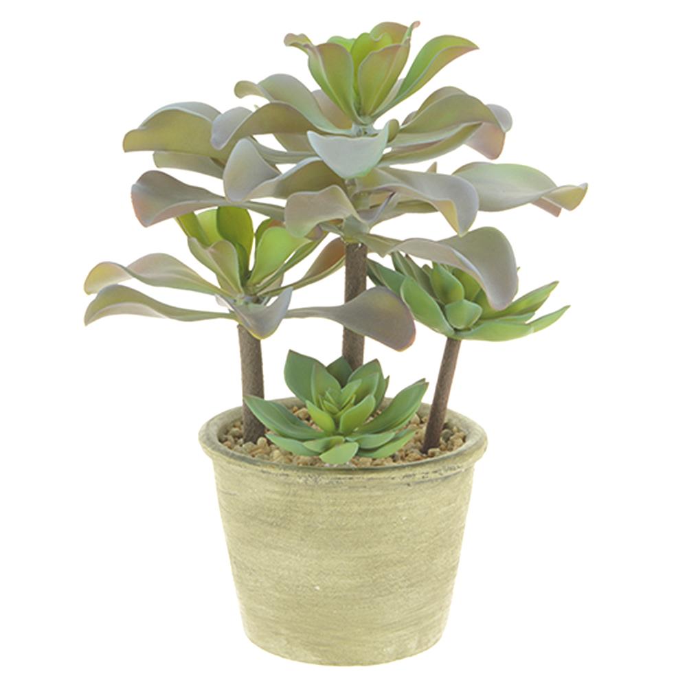Plant Pot Rings Uk
