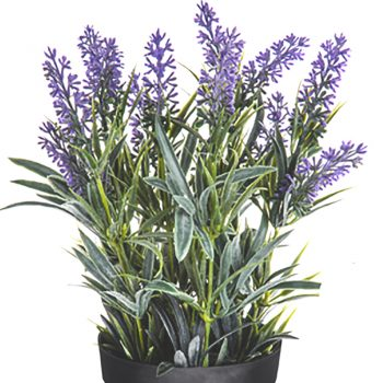 close up of artificial lavender
