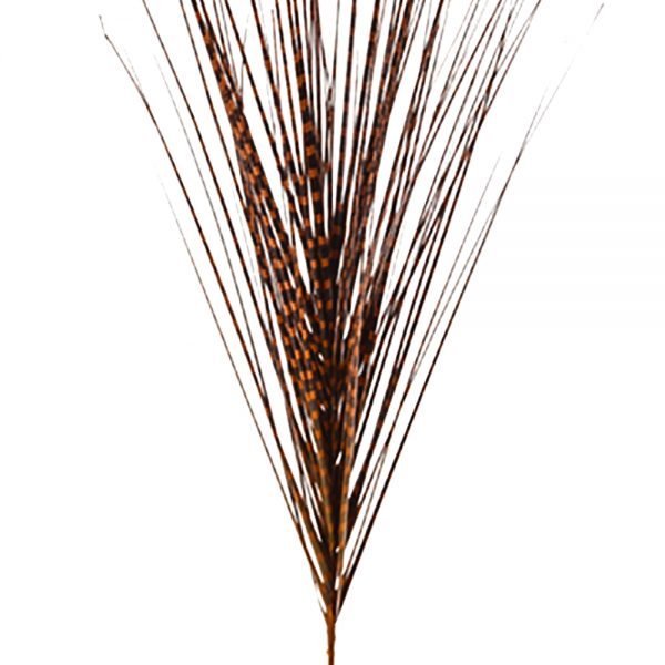 Artificial Brown Zebra Grass