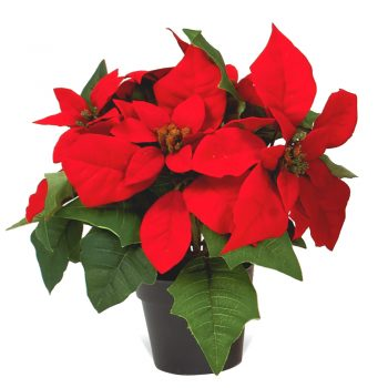 artificial poinsettia plants in pot