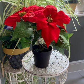 Artificial Red Christmas Poinsettia Plant in Pot