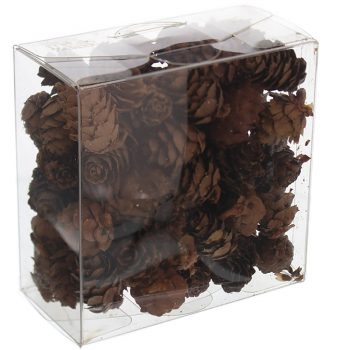 box of 100g natural pine cones