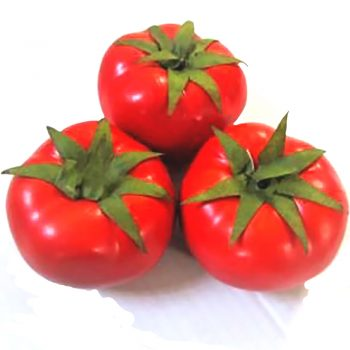 three artificial tomatoes