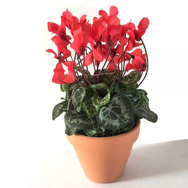 large artificial cyclamen plants in a pot