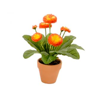 orange artificial bellis daisy