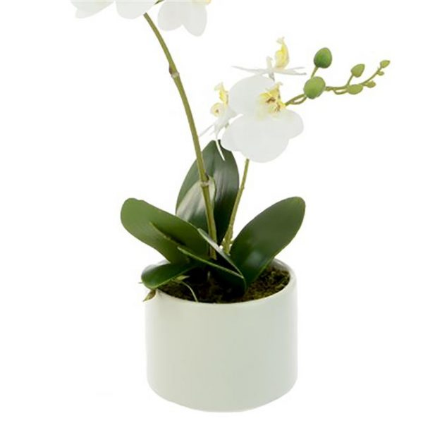 white artificial orchid in a white pot