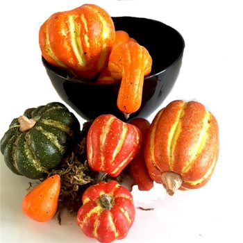 artificial pumpkin collection in black bowl